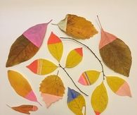Paint dipped leaves