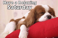 Have a relaxing Saturday