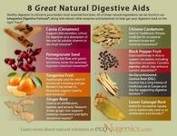 8 Natural Digestive Aids