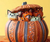 Pumpkin Kitties