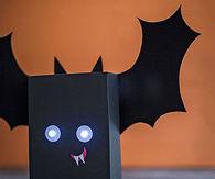 Box Bat