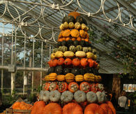 Pumpkin Tower at Kew Gardens Autumn Festival, London