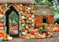 Dallas, TX Pumpkin Village at the Arboretum -1
