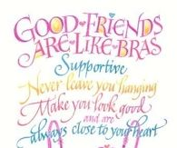Good Friends Are Like Bras....