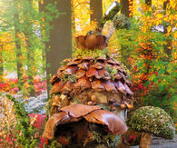 Autumn Fairy House