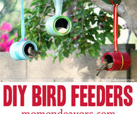 How to make a bird feeder for your garden