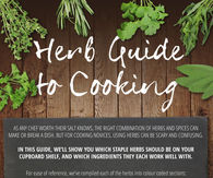 Herb Guide For Cooking