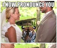 I now Pronounce