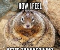 How I feel After Thanksgiving