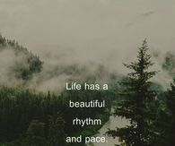 Life has a beautiful rhythm