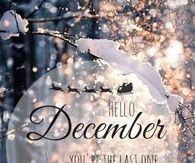 hello december quotes pictures photos images and pics