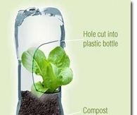 Creative Gardening Ideas Pictures, Photos, Images, and Pics for ...