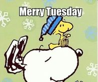 Merry Tuesday