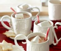 Hot cocoa, candy canes and cookies