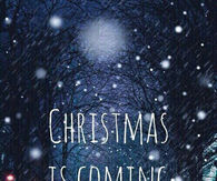 Almost Christmas Quotes.Almost Christmas Quotes Pictures Photos Images And Pics