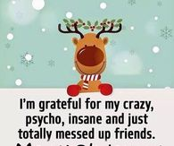 Merry Christmas Crazy Friends
