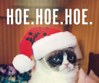 Grumpy Cat Pictures, Photos, Images, and Pics for Facebook, Tumblr ...