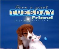 Have a great Tuesday friend
