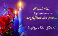 I wish that all your wishes are fulfilled this year. Happy New Year