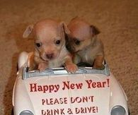 Happy New Year Don't Drink and Drive