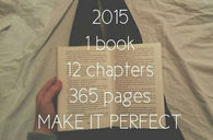 2015, 1 book, 12 chapters, 365 pages, make it perfect