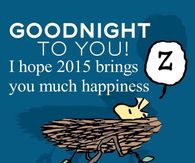 Goodnight 2015