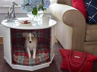 End-table Repurposed a Doggy House for Small Doggy