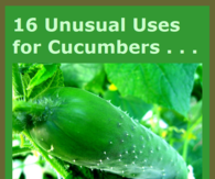 16 unusual uses for cucumbers