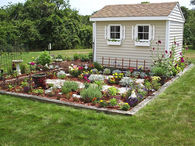 Pretty Flower Garden & Garden Shed
