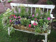 Old Bench Repurposed as a Planter