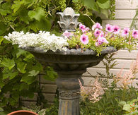 Birdbath as a Flower Planter