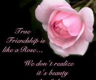 True Friendship is like a rose....