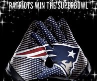 Patriots win the superbowl