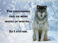 The groundhog said 6 more weeks of winter