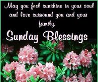 May you feel sunshine in your soul and love surround you and your family, Sunday Blessings