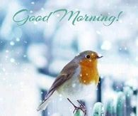 Image result for good morning snow images