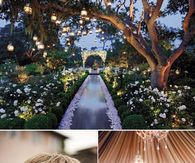 Beautiful Wedding Trends