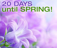 20 Days Until Spring