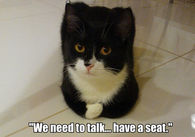 We need to talk...have a seat.