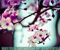 May Your Wednesday Be Wonderful