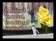 A friend in need, is a friend indeed