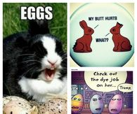 Funny Easter Collage