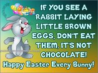 If you see a rabbit laying brown eggs