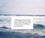 The Day I Will Stop Missing You