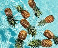 Pineapples In Water