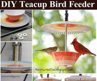 DIY Teacup Bird Feeder Tutorial