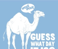 Camel Pictures, Photos, Images, and Pics for Facebook, Tumblr, Pinterest, and...