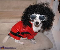 Thriller dog costume