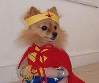 Pom Super hero