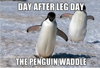 The penguin waddle